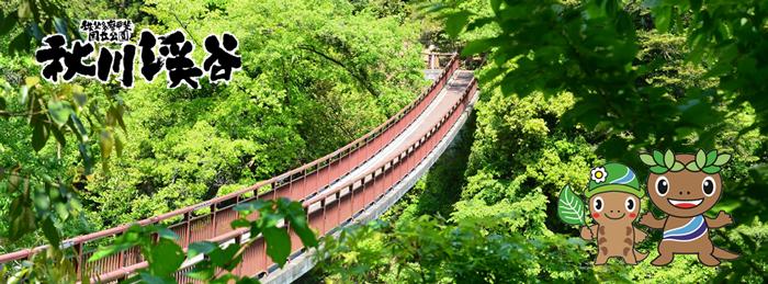 秋川渓谷 あきがわけいこく の魅力 あきる野市